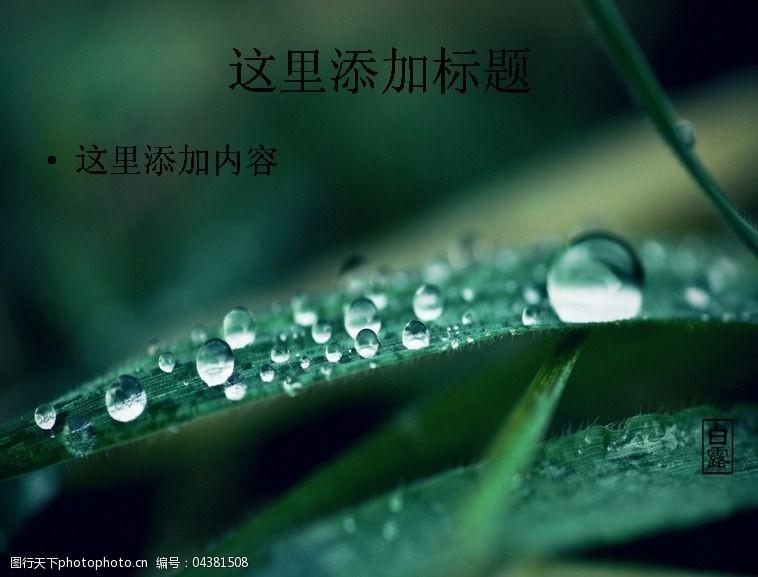风景ppt封面白露时节高清ppt封面(4)