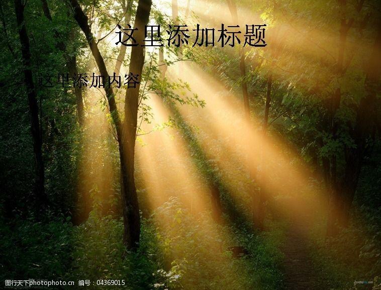 风景ppt封面穿透树林的光线高清ppt封面(8)