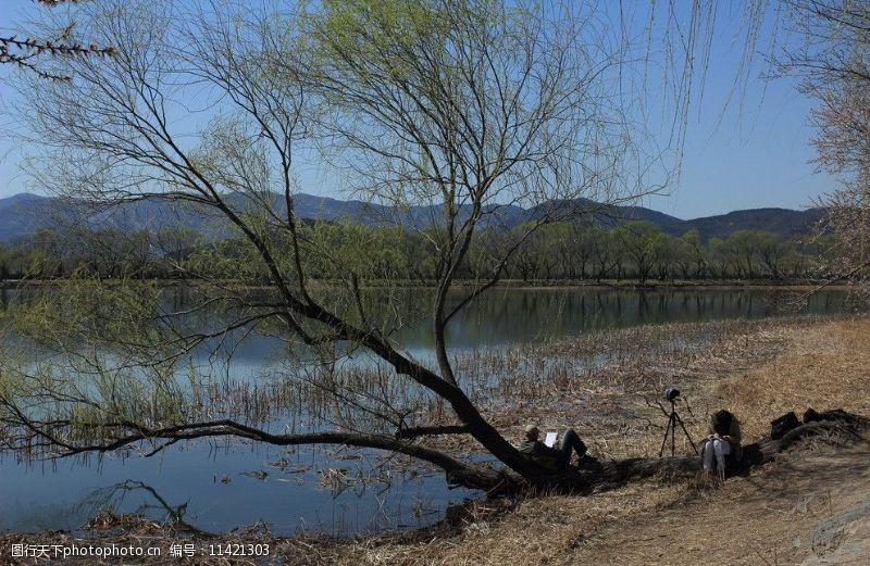 湖水情侣树下情侣图片