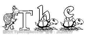 opentype公斤甲鱼字体