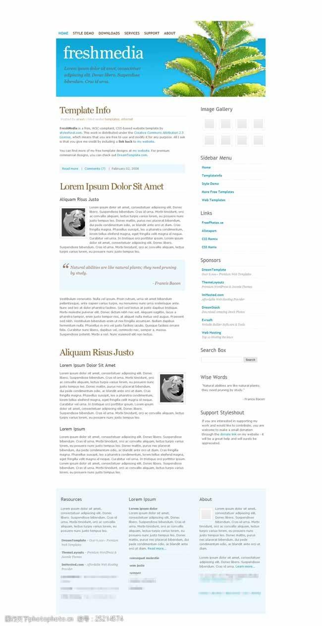 web20白色线条简洁的博客模板